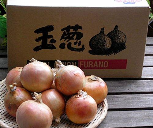 玉ねぎ 10kg 北海道 富良野産 玉葱 訳あり 10kg