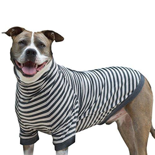 Tooth & Honey Dog Shirt