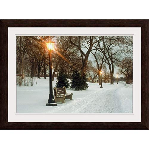 GREATBIGCANVAS Bench with streetlamp Near Snow-Covered Road, Lake Como Park, Saint Paul, Minnesota Espresso Fr.