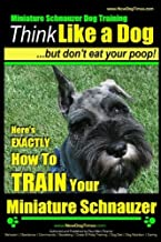 Miniature Schnauzer Dog Training   Think Like a Dog but Don't Eat Your Poop!: Here's Exactly How to Train Your Miature Schnauzer: 1