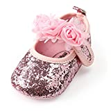 Antheron Baby Girls Mary Jane Flats Soft Sole Infant Moccasins Floral Sparkly Toddler Princess Dress Shoes(Pink,6-12 Month)