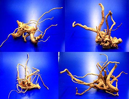 WFW wasserflora Rote Moorwurzel/Moorkienholz, Gr. M Traumwurzel 30-40cm