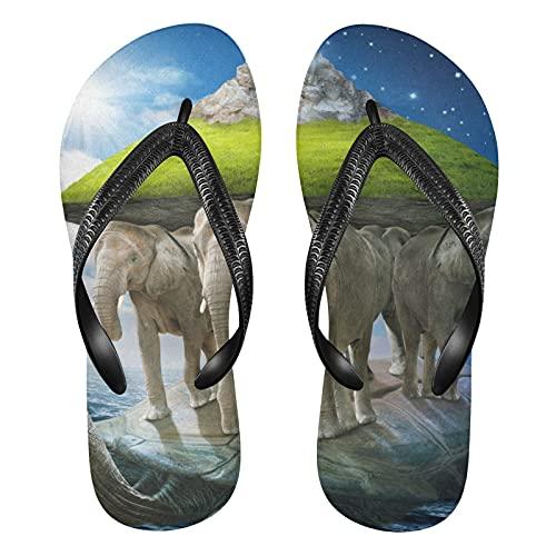 Linomo Earth World - Sandalias de playa para hombre, diseño de tortuga, color, talla 39/41 EU