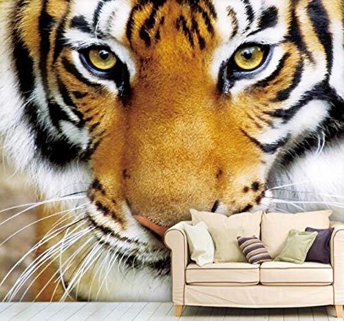 3D vliesbehang fotobehang abstract fotobehang dier tijger 3D fotobehang behang behang voor beddengoed woonkamer tv-achtergrond 430*300 430 x 300.