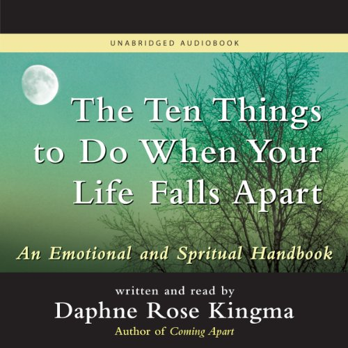 The Ten Things to Do When Your Life Falls Apart audiobook cover art