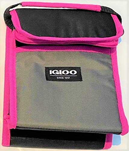Igloo Cooler Bag Holds 6 Cans Lunch Sack - Fuchsia & Black