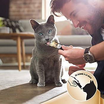 Sheba Creamy Snacks pour chat adulte – Friandise crémeuse - au poulet – 20 x 4 x 12g sachets snack gourmand pour chats