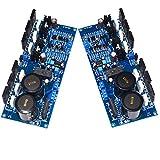Cvthfyk A60 Scheda Amplificatore HiFi retroazione Corrente Scheda Amplificatore di Potenza Digitale (Edition : A60)