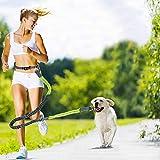 Handfreie Hundeleine, Hunde-Gurtband, verstellbare Hundeleine, Taillengürtel, Haustier-Hundeleine,...