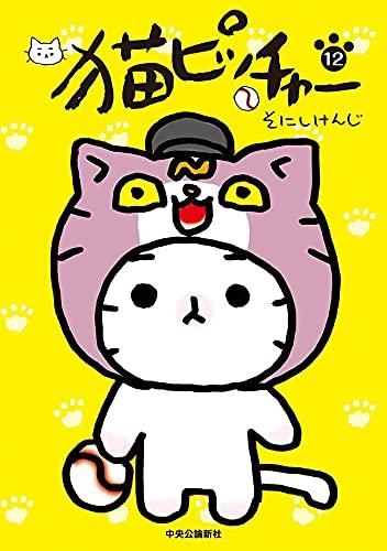 猫ピッチャー12