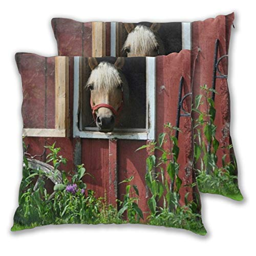 HASENCIV Set of 2 Square Cushion Covers Farm Green Grass Barn Photography Backdrop Country Western Cowboy Red Wooden Hourse Stable Photo Throw Pillow Case Protector Couch Sofa Home Car Decor