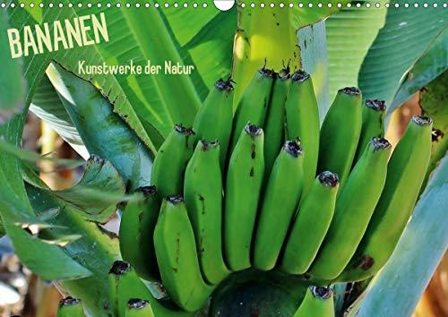 Bananen (Wandkalender 2021 DIN A3 quer)