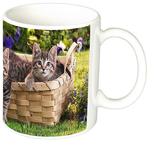 MasTazas Gatitos Gatos Kittens Cats Q Tasse Mug