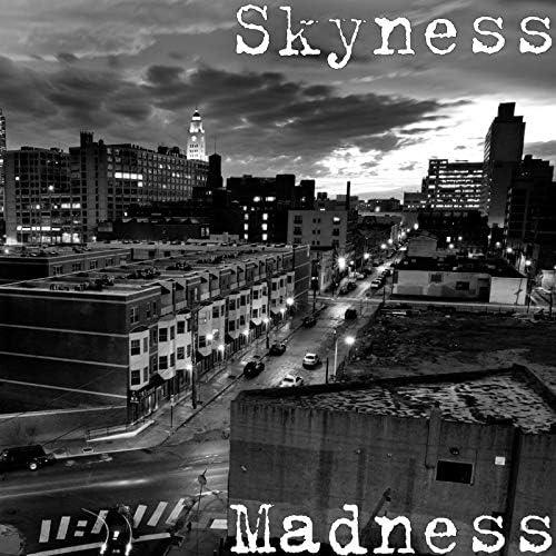 Skyness