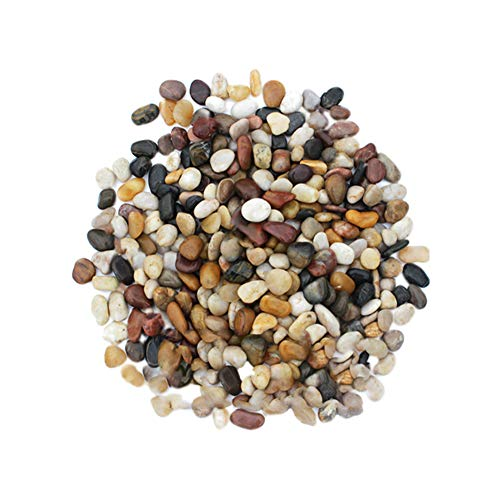 Chyuan Decorative Stones River Pebbles Beach Pebbles for Flowerpot Landscaping Vase Fillers Garden and Aquarium Decoration Paving Garden Rain Stone (1-3cm)