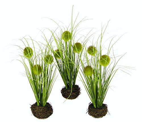 Flair Flower Knopfgras Im Nest, 3er Set, Natur, Polyester, Kunststoff, Grün, 10 x 10 x 26 cm, 3-Einheiten