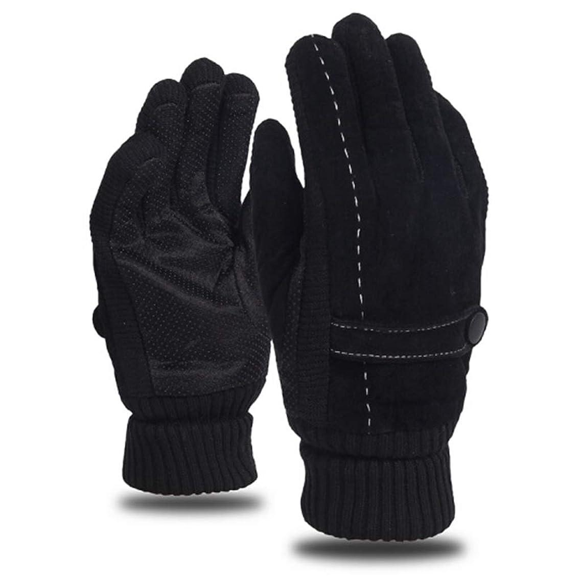 批判解任社交的レザーグローブメンズウィンライディングプラスベルベット厚手暖かいドライビングアウトドアオートバイ防風コールドノンスリップメンズコットン手袋 (色 : 黒)