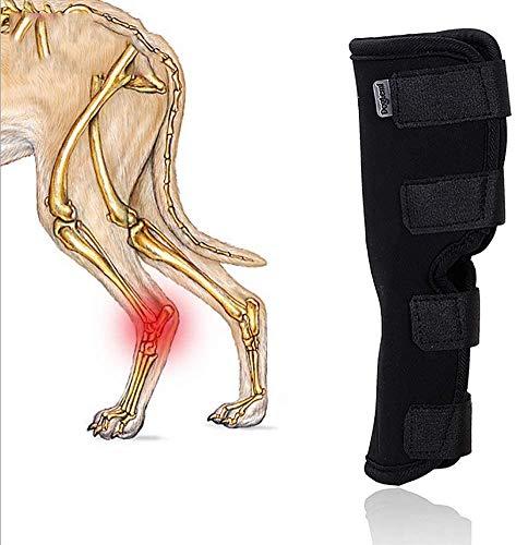 AMITD Gelenkbandage, Sprunggelenk Bandage Für Den Hund, Hinterbein Stützband - Schützt Wunden, Verhindert Verletzungen Und Verstauchungen,S
