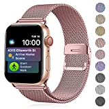 Funbiz Metal Correa Compatible con Apple Watch 38mm 40mm 42mm 44mm, Pulsera de Repuesto de Acero Inoxidable para iWatch Series 5 4 3 2 1, 38mm/40mm-Oro Rosa