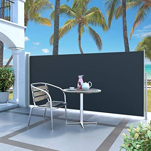 Ausziehbare Seitenmarkise 160 x 500 cm Schwarz, mit Sonnenschutz UV-Schutz, Garten, Terrasse