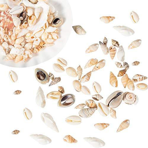 NBEADS 250g Mixed Seashell Charms, Winzige Muschel Ocean Beach Spiral Charms Für Strand Thema Party Hochzeit Home Decoration Aquarium Vase Füller