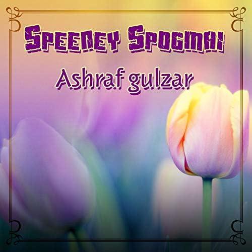 Ashraf Gulzar