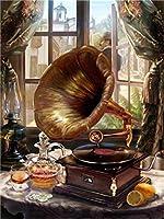 油絵 数字キットによる絵画音楽デジタル絵画油絵 数字キットによる絵画手塗り DIY絵 デジタル油絵塗り絵 40x50cm (フレームレス)