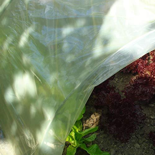 Tenax Sun, 3 x 10 m, Amarillo, película Protectora Impermeable de plástico...