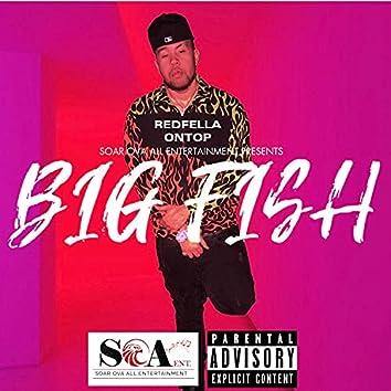 Big Fish : The Mixtape