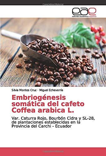 Embriogénesis somática del cafeto Coffea arabica L.: Var. Caturra Rojo, Bourbón Cidra y SL-28, de plantaciones establecidas en la Provincia del Carchi - Ecuador