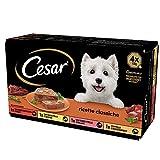 cesar ricette classiche cibo per cane, selezione assortita, 150 g, 24 vaschette - 3600 g