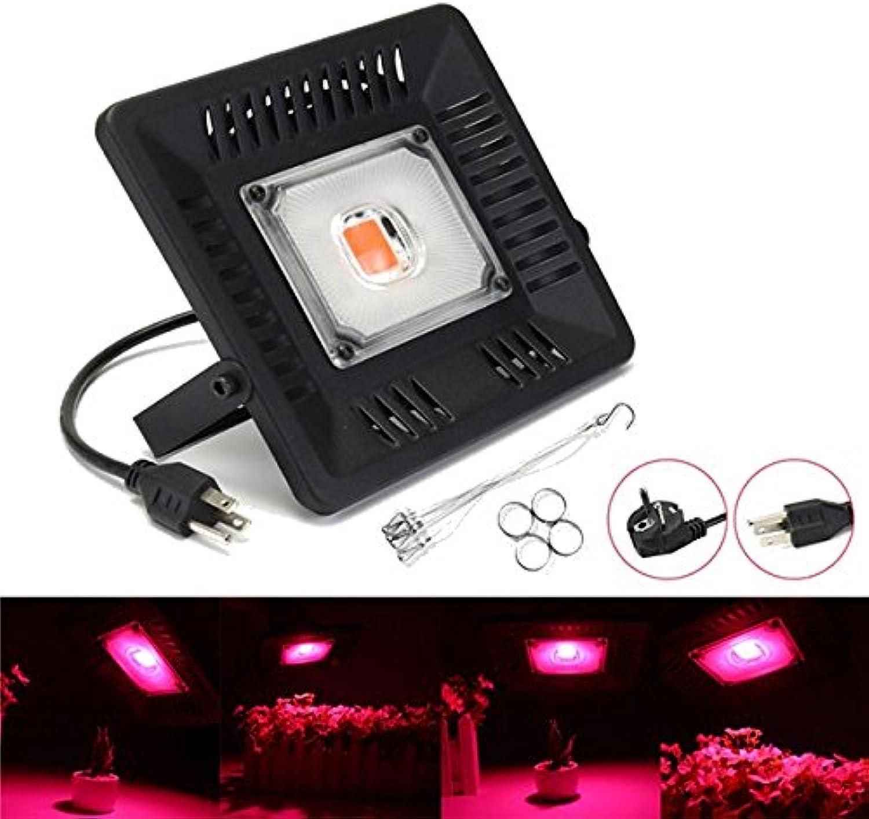 Wuchance 50W Wasserdichtes Vollspektrum LED wachsen leichte Einzelne Kopf hangable COB Pflanzenlampe 110 220 V (Farbe   US Plug)