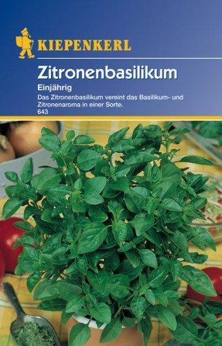 Sperli Gemüsesamen Zitronenbasilikum einjährig, grün