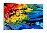 Cuadro sobre vidrio - Impresiones sobre Vidrio - pluma loro pájaro - 100x70cm - Decoracion de Pared - Impresión en Vidrio - Cuadro en vidrio - Cuadro de Cristal - Pintura sobre Vidrio - GAA100x70-3428