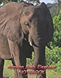 African Bush Elephant NOTEBOOK: Notebooks and Journals 110 pages (8.5x11)