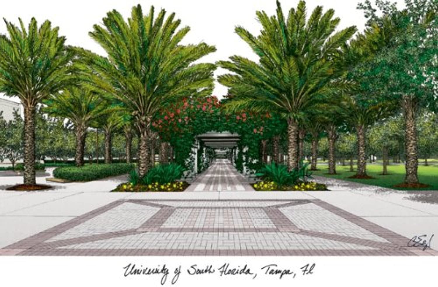 Campus Images University of South Florida Lithographic Print