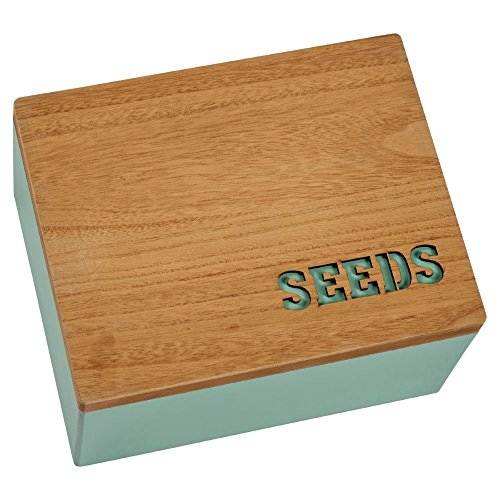 Rocita 3Pcs Set 12 S/ämlingbeh/älter Reusable Plastic Seeds Sprout Box Gartenger/äte Zubeh/ör S/ämlingbeh/älter Plates Nursery T/öpfe S/ämling Starter Schwarz
