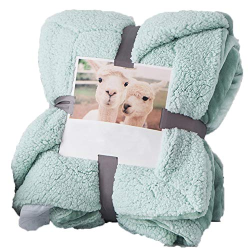 BDLY Double-Layer Thick Lamb Wool Blanket to Keep Warm in Winter Single Double Flannel Blanket Siesta Blanket