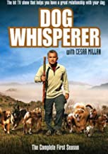 Best dog whisperer tv episodes Reviews