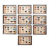 Gjyia Gemas minerales Naturales mezcladas de la colección Rock 12pcs con Caja 8 x 5 x 1.5 cm