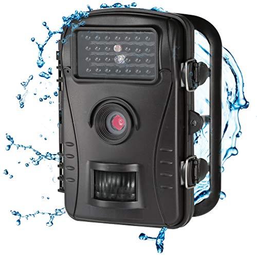 ALTERDJ Wildkamera 12MP 720P, WiFi mit Bewegungsmelder Nachtsicht Wildlife Jagdkamera, Wildtierkamera mit Nachtsichtbewegung Wasserdicht IP66