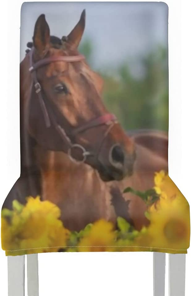 Chair Covers for Ranking TOP18 Dining Roo 2pcs Bridle Horse Str Max 48% OFF Bay Sunflowers