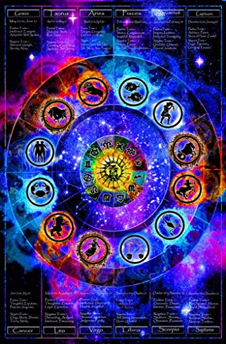 Studio B Zodiac Chart NonFlocked Blacklight Cool Wall Decor Art Print Poster 24x36