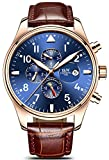Swiss Watch Men's Complex Function Analog Automatic Mechanical Watch Stainless Steel Luminous Watch (Leather Band-Rose Gold Blue)