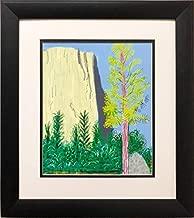 David Hockney El Capitan Yosemite Pop New Custom Framed Art 16.5