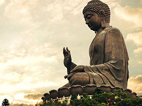 Stories of the Buddha