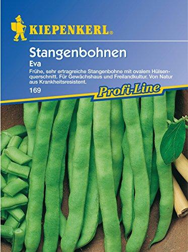 Sperli Gemüsesamen Stangenbohnen Eva, grün
