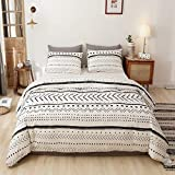 Smoofy Comforter Set, Boho Aztec Folkloric Art Pattern Bedding with Soft Microfiber Fill Bedding, 1 Comforter & 2 Pillowcases(White & Black)