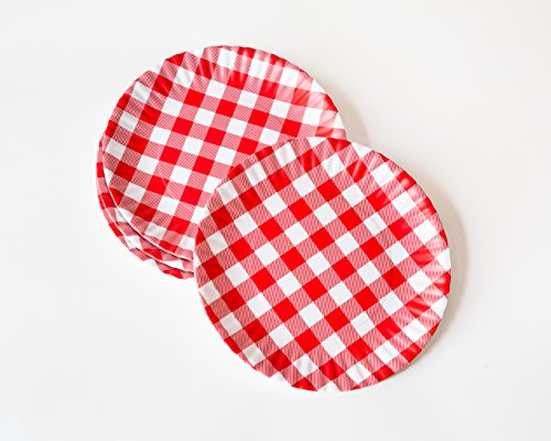 'What Is It?' Reusable Red & White Gingham Checkered Picnic / Dinner Plate, 9 Inch Melamine, Set of 4