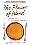 The Flavor of Wood: In Search of the Wild Taste of Trees from Smoke and Sap to Root and Bark (English Edition)